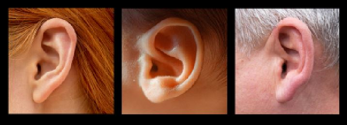 age of ears